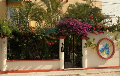 Photo for Villa Zaztun - Condolito Maya - Long and Short Term Rental in Cozumel, MX