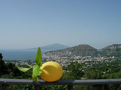 Photo for Holiday apartment Sant'Agnello for 1 - 4 persons - Farmhouse