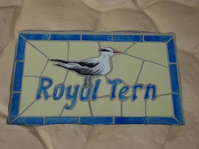 Photo for Royal Tern Beachfront Apt - Direct Beach Acc. with stunning view to the sunsets