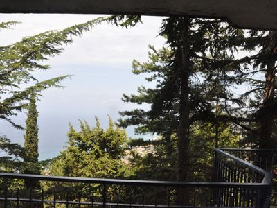 Photo for The sea among pine trees in Castellabate