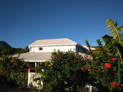 Photo for Villa Creole 4 stars in its floral setting. Beach at 800 m. Swimming pool. Garden