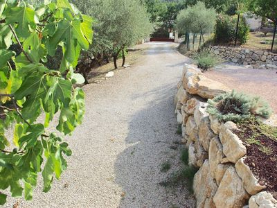 Photo for Provencal farmhouse in the Var hinterland