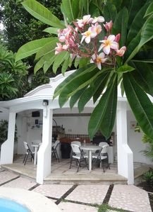 The Flor de Mayo (Plumeria) trees and outside  dining with 2 barbecues.