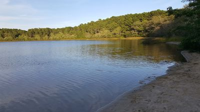 Photo for Rare Pondfront Home--Above Gull Pond Sluiceway-Kayak, Swim, Relax--Only 0.6 MI to Ocean Beach