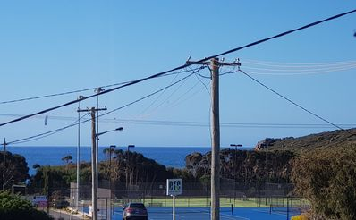 Photo for Seaviews by the Bluff - location, location!!!
