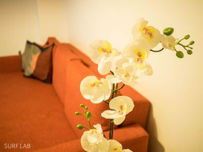 Photo for Anjos · Charming Apartment in Lisbon City Center