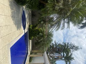 Photo for Beautiful big house, near restaurants, unicentro, jardín plaza and more.