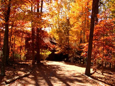 Breath taking fall - this is Treetop's driveway.