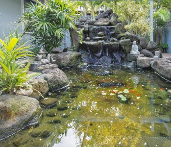 Koi pond with soothing water fountain
