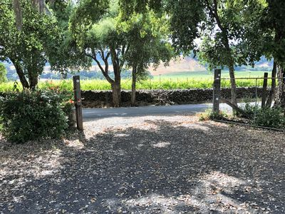 Photo for Secluded Cottage, With Vineyard View, Sleeps Six, Great Location!