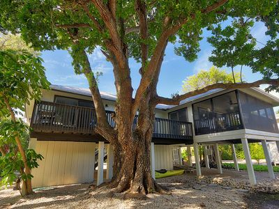 Photo for Come Relax In A Newly Renovated Home In The Village Of Captiva