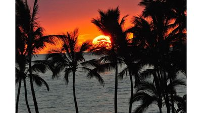 Maui sunsets await you at The Palms at Wailea, #207 Ground floor condo. BOOK NOW
