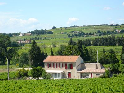 Photo for Holiday house with modern decoration in the heart of the vineyards