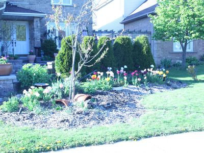 Photo for 2BR Bed & Breakfast Vacation Rental in Oshawa, ON