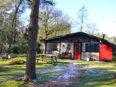 Photo for Cozy cottage in a small park in the woods, nearby nature reserve Lemelerberg