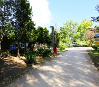 Photo for Camping Porto Corallo. with swimming pool and equipped beach. Bungalow 2