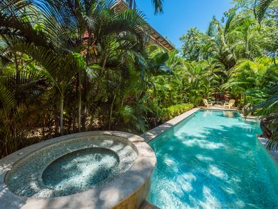 Photo for NEW RENTAL! Lush Jungle Paradise 150 Meters from Beach