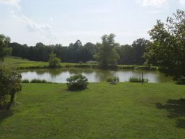 Photo for 6BR Lodge Vacation Rental in Thompsonville, Illinois