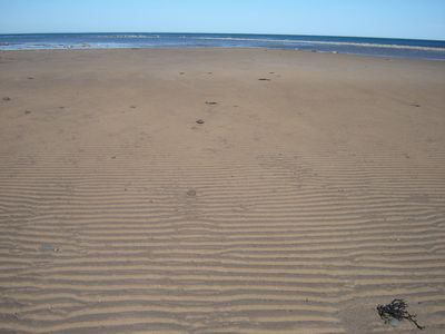 Photo for Wheelhouse:  A unique Northumberland Strait get-a-way on the beach.