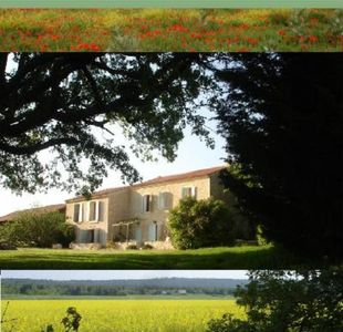 Photo for House with character in Provence