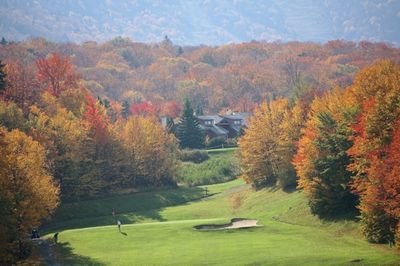 looking at trail creek from the golf course with the beautiful fall color