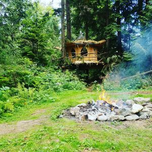 Photo for Leaf TreeHouse at Mountain Views Retreat in Monroe, WA