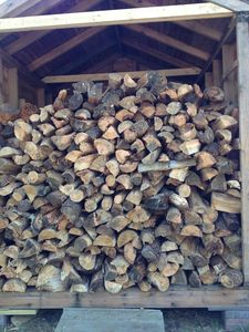 Our wood shed for the outdoor fire pit was fully stacked in June