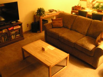 LR is warm and cozy with a fireplace and flatscreen TV