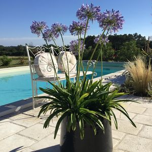 From our beautiful pool you just look out over the open countryside