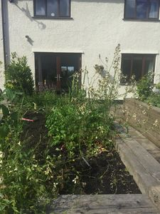 view of raised veggie beds and french doors from sitting room