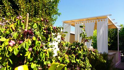 Photo for 1BR House Vacation Rental in Torre suda