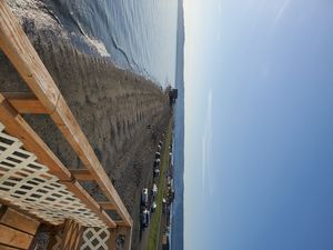 Photo for 2 bedroom on the Homer Spit with 180 degree view of Kachemak Bay