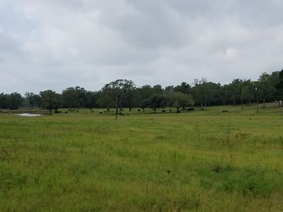 39 acres with open pastures and scenic views