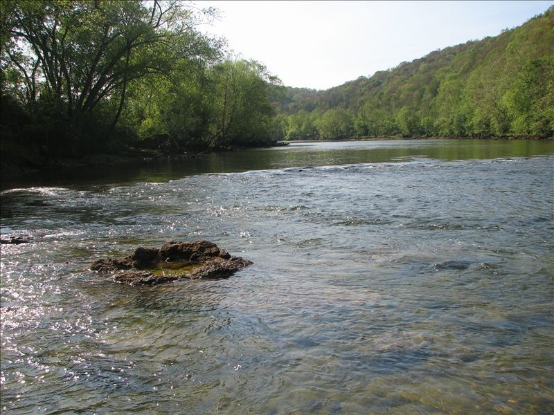 Below norris dam clinch river lodge tennessee trout for Clinch river fishing
