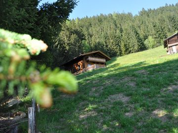 Chalet Hans Erwiese: Cottage holidays in a secluded location - from July New: - Chalet Hanserwiese