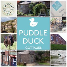 Two Beautiful Cottages In The Heart Of The Ironbridge Gorge, Shropshire   - Puddle Duck Cottages - Duckling Cottage