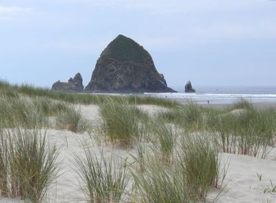 Our view of Haystack Rock from the dunes at the end of our street.