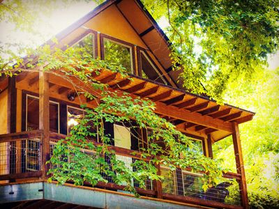 Photo for Fall Specials! Gorgeous Cabin on River Road by Guadalupe River!