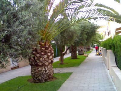 Photo for Bungalow in a complex with pool and near the beach els molins.