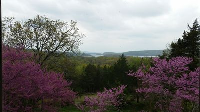 Photo for Panoramic views of Lake Tenkiller from the House on the Hill