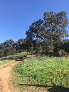 Nearby trailhead to Los Robles trail system