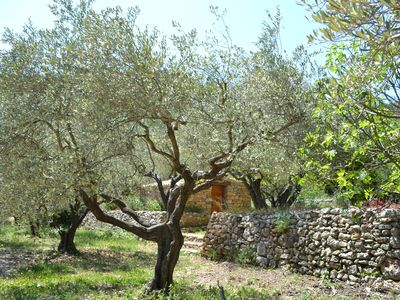 Photo for RARE !!! Provencal cabins with swimming pool on 15 000 m2 of olive trees !!!