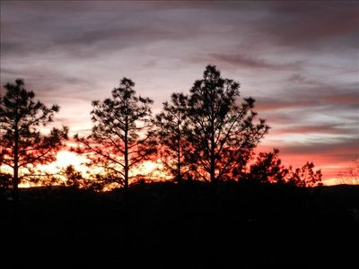 Enjoy the Pines in Luxury; Recently Remodeled. Excellent View.