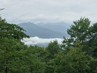 Photo for Wildflower Cove - Mountain Views, Close to Asheville and Black Mountain