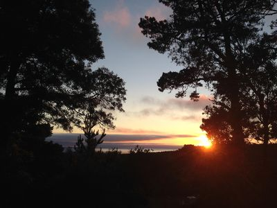 Photo for Private Carmel Woods, Dog Friendly, By Monterey, Pebble Beach, Big Sur