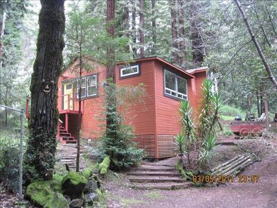 Photo for Cabin Getaway, Surrounded by Forest, Relaxing, Occidental Ca