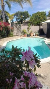 Photo for Artist Retreat 3 bed 2 bath Pool Home Close to All