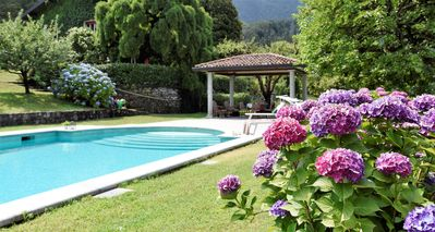Photo for Lake Maggiore, beautiful villa with pool and large garden on Lake Maggiore