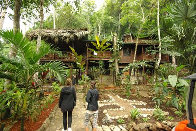 The Toucan House - Best vacation rental in Belize!
