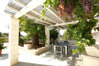 Tempting: the ripe grapes above your terrace in late summer.